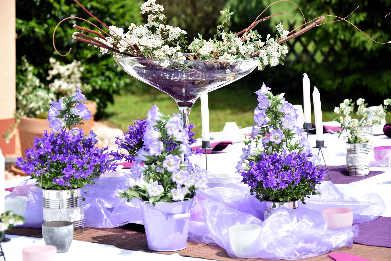 Deko lila gartenfeier heartmann weddingplanner - Gartenfeier deko ...